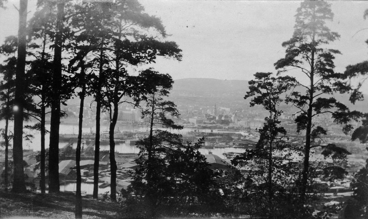 Utsikt mot Oslo fra Ekebergåsen.