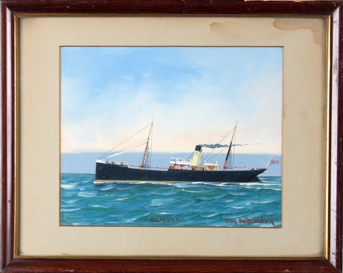 Skipsportrett av dampskipet GENOVA under fart i åpen sjø. Har skorsteinsmerke med bokstaven G samt norsk flagg akter