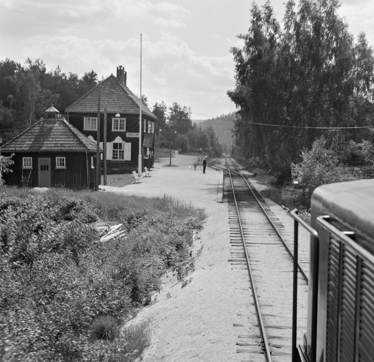Fra Tjønnefoss stasjon på Treungenbanen. Utsikt fra førerrommet på diesellokomotivet.
