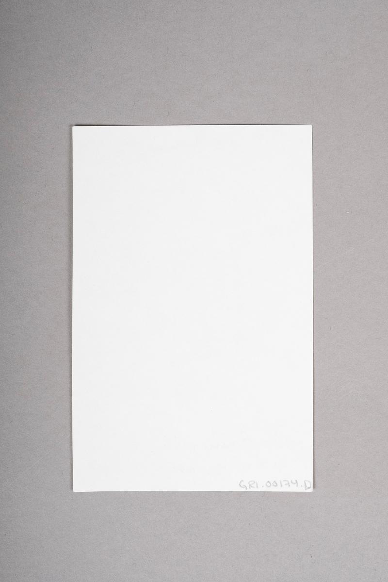 Kopi av portrett-tegning av Tulla Bruun eller Gerd V. Krogh. Portrettet (originalen) er tegnet med blyant eller penn, og er i svart-hvitt.