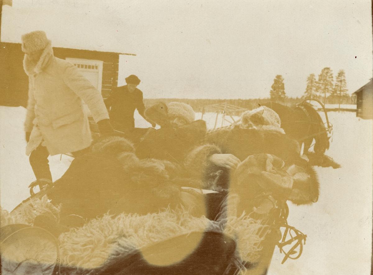 Officerare från Smålands husarregemente K 4 åker släde, vinterövning i Norrbotten omkring 1910.
