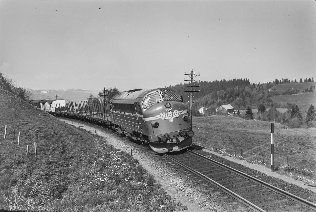 Godstog fra Trondheim til Oslo Ø syd for Trondheim Toget trekkes av diesellokomotiv type Di 3 nr. 603.