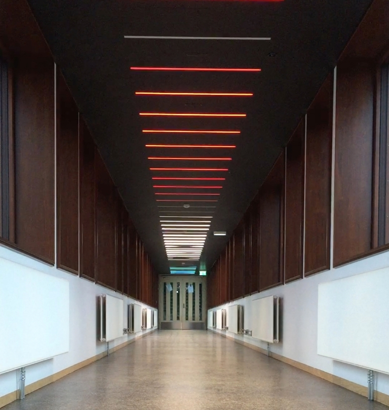 I den lange korridoren som binder hovedbygningen sammen med gymsalen er et stort antall lysarmaturer montert av kunstneren Børre Sæthre. RGB-LED-lysarmaturene, integrert i taket og programmert i forskjellige intervaller skaper en bølge av bevegelse. Sekvensene av intervaller er direkte inspirert av ulike bevegelsesmønstre fra idrett som for eksempel sommerfugl svømming eller skøyter. Slik har verket et direkte forhold til de daglige brukerne, da bevegelse er selve utgangspunktet for all forskning og aktivitet ved Idrettshøgskolen.   Korridoren har vinduer langs begge sider og et skarpt lys på dagtid, allikevel klarer LED-lysene å lyse trenge gjennom, og på kveldstid kan kunstverket ses på lang avstand i hele området.   Et stort antall studenter, ansatte og besøkende går gjennom korridoren hver dag. Mesteparten av tiden brukes korridoren som en del av transportetappe, en passasje fra ett sted til et annet. Allikevel kan området oppfattes som en rolig plass som noen ganger blir brukt som en form for rekreasjonsrom: et rom for alenetid eller for å ha et uformelt møte. Dette blir derfor et ideelt sted for en isolert kunstopplevelse, som forhåpentligvis utløser tilskuerens fantasi om hvilken form for bevegelse lysformasjonen representerer.  Hvert RGB-LED-armatur har 180 dioder i fargene rød, grønn og blå, og kan skape millioner av forskjellige farger og nyanser av lys. Kunstneren relaterer installasjonen til de klare og sterke farger som brukes i sport-tekstiler - for eksempel neonfarger. Den gjentatte strømmen av lys som representerer bevegelse, kan tolkes som byggets egne og fargerike puls.