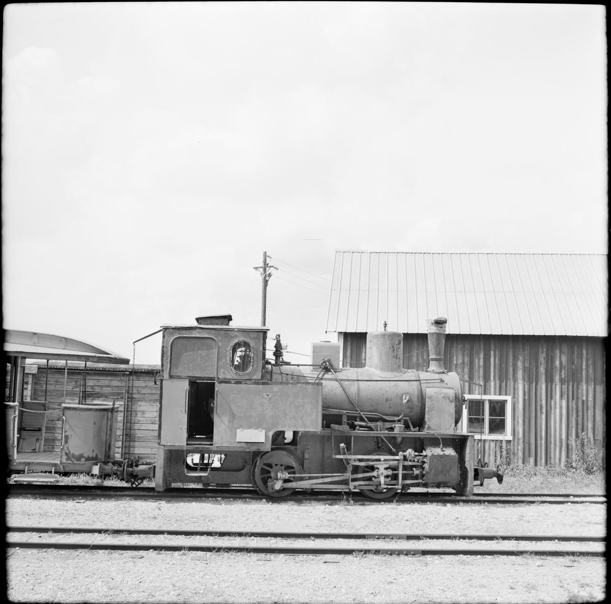 Ånglok från Limhamns kalkbrott. Fotot är taget hos Gotlands Hesselby Järnväg.