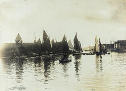 Smedasundet sett mot nordvest, ca. 1895.