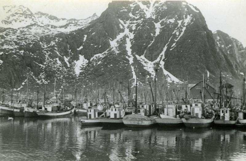 Fiskeflåten i havn