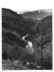 Drivdalen - mot øst