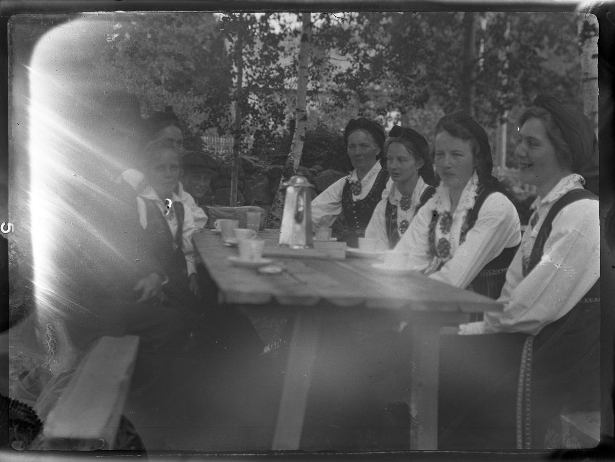 Fotosamling etter Bendik Ketilson Taraldlien (1863-1951) Fyresdal. Gårdbruker, fotograf og skogbruksmann. Fotosamlingen etter fotograf Taraldlien dokumenterer områdene Fyresdal og omegn.  Gruppeportrett, kvinner i folkedrakt.