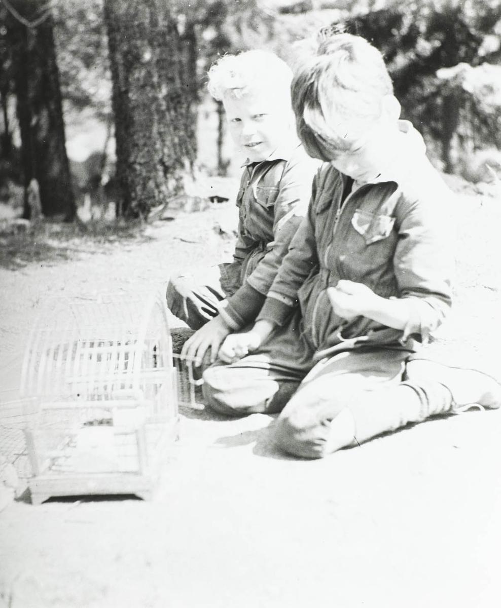 To barn på kne ved fuglebur..
