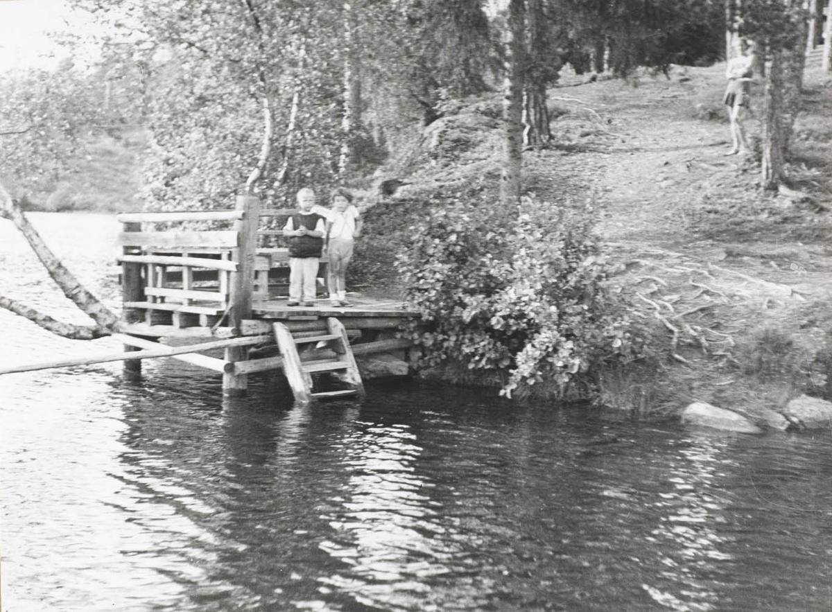 To små gutter på brygge, en jente stående på land i skogen, badetrapp