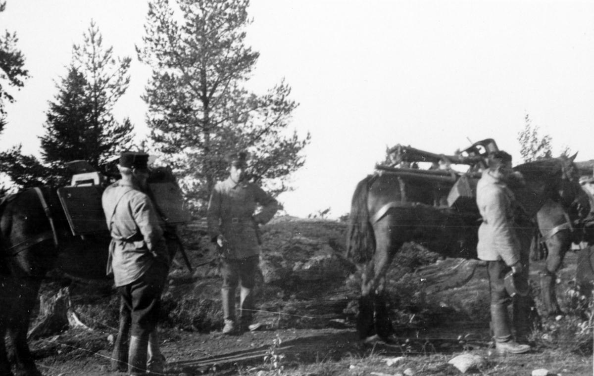 Soldater i feltuniform.Tar en liten pause sammen med hestene.