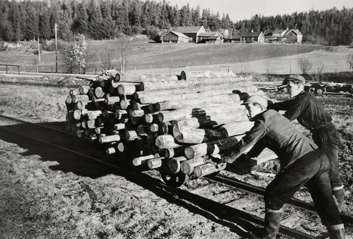 To mann dytter en arbeidstralle med kubb / stokker.