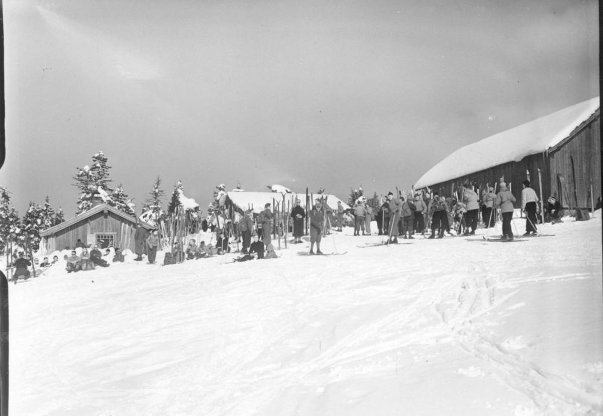 Skiturister