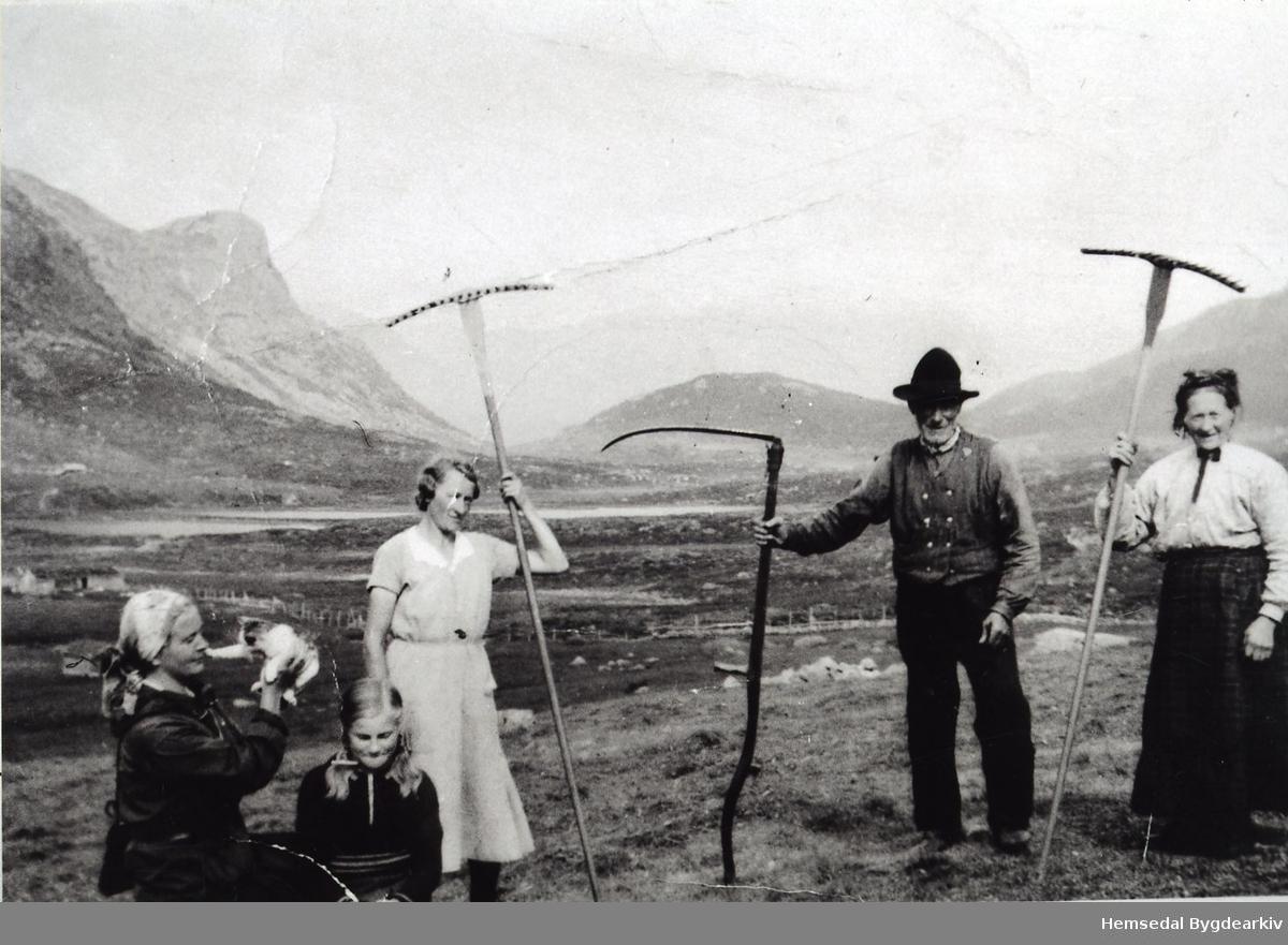 Fekjastølen i Holdeskaret i Hemsedal i 1937. Frå venstre: Fru Magnesen (byfrue), Magnhild Flaget, Eline Fekene, Nils Fekene, og Margit Fekene
