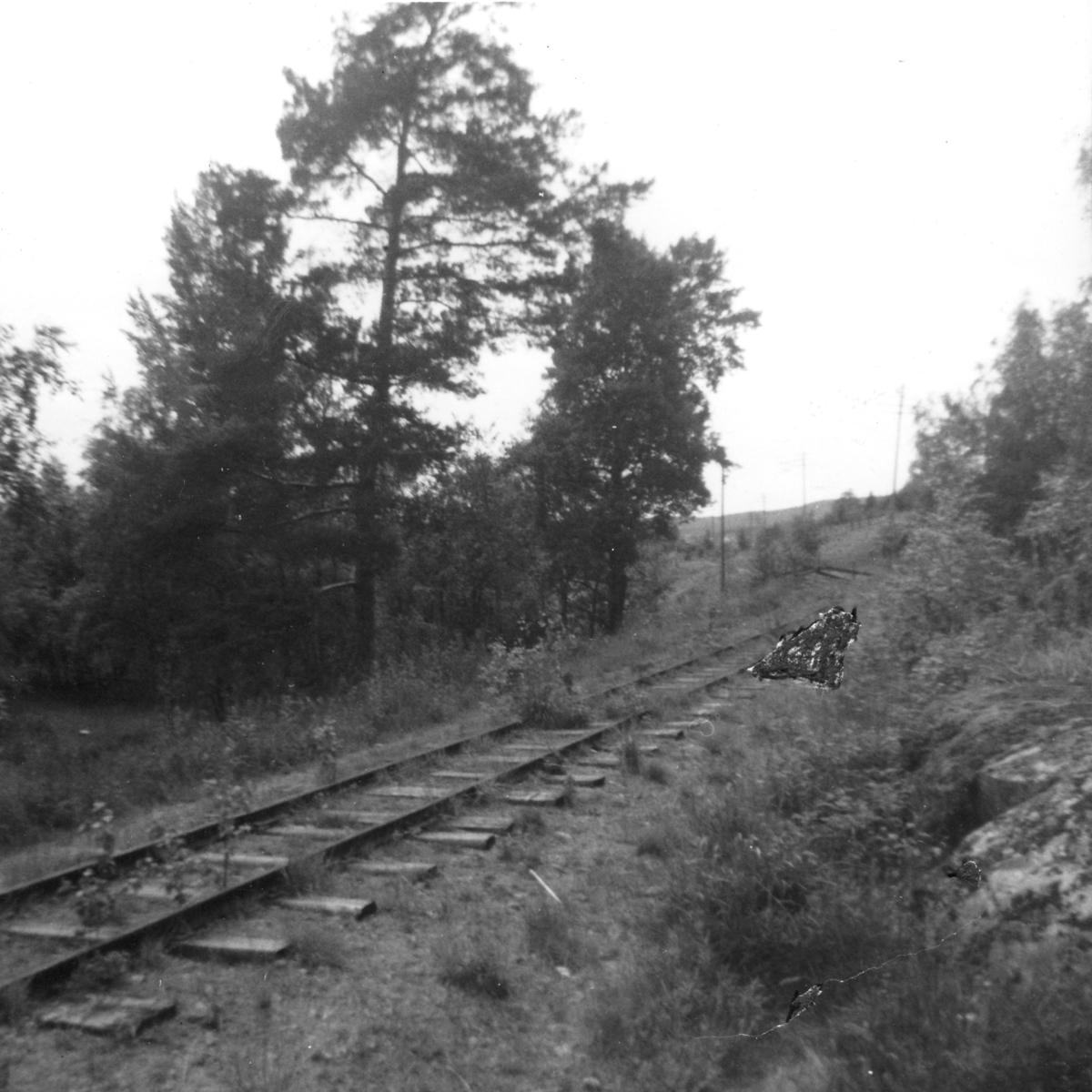 Nær Hornåseng stasjon, retning syd.