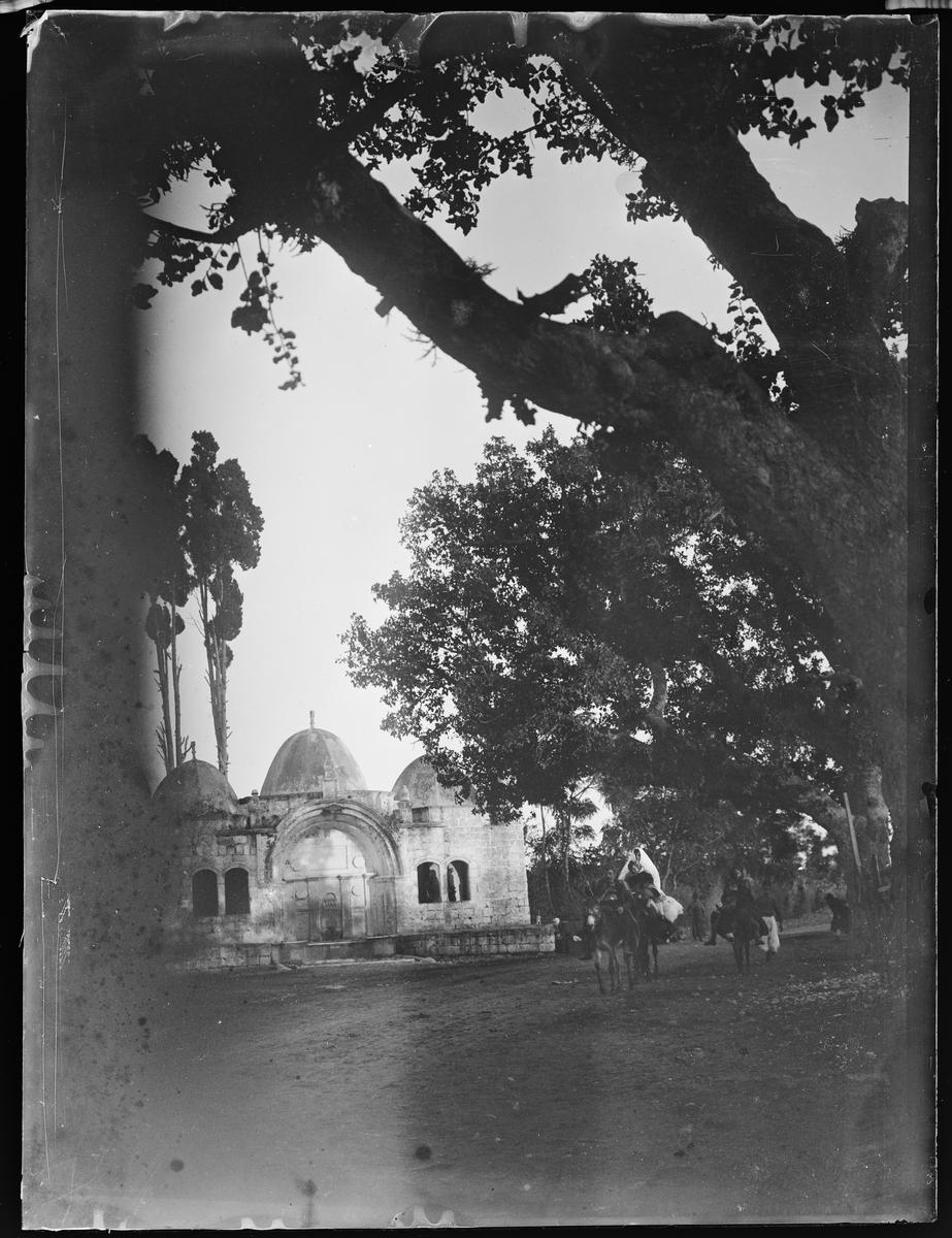 """""""Jerusalem 10, Cairo 6"""" (inskr eske). Tempel med tre kupler. Et reisefølge kommer mot fotografen. Esler med stor oppakning. Store trær rundt."""