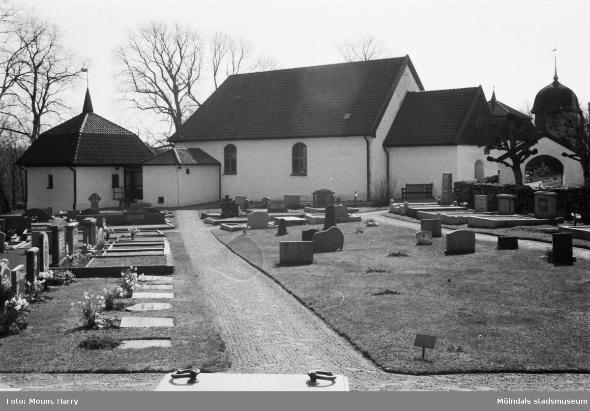 """Kållereds hembygdsgille anordnar sockenvandring i området vid Kållereds kyrka, år 1984. """"Kållereds kyrka tidigt en vårmorgon.""""  För mer information om bilden se under tilläggsinformation."""