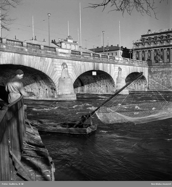 Stockholms ström vid Norrbro. En man i basker fiskar med rev, i bakgrunden en håvbåt