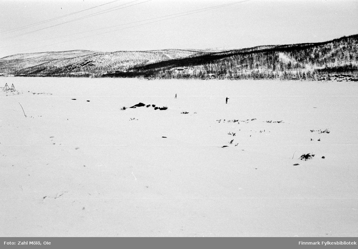 April 1968. Polmak. Landskapsbilder, skog fotografert av Ole Zahl Mölö.