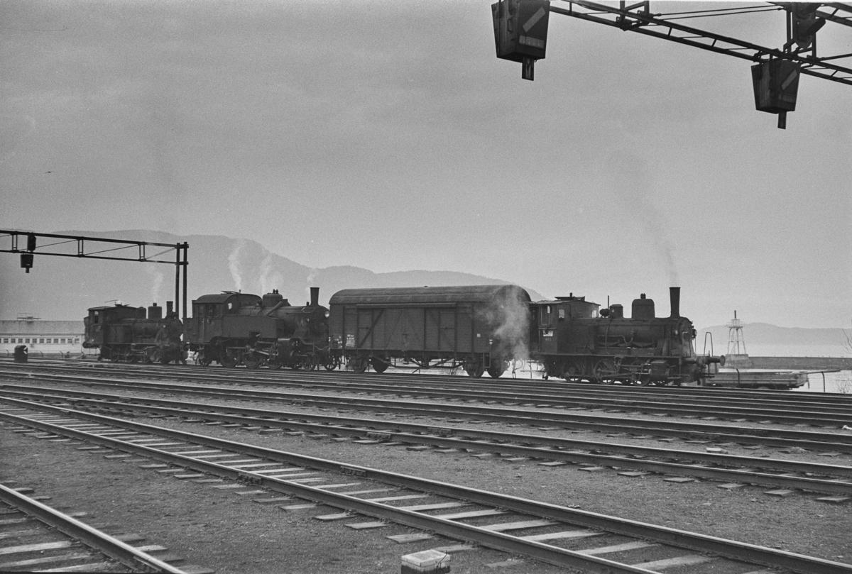 Damplokomotiver i skiftetjeneste på Trondheim stasjon. Fra høyre type 25e nr. 485, en godsvogn type G4, type 32a nr. 291  og type 25a nr. 223.