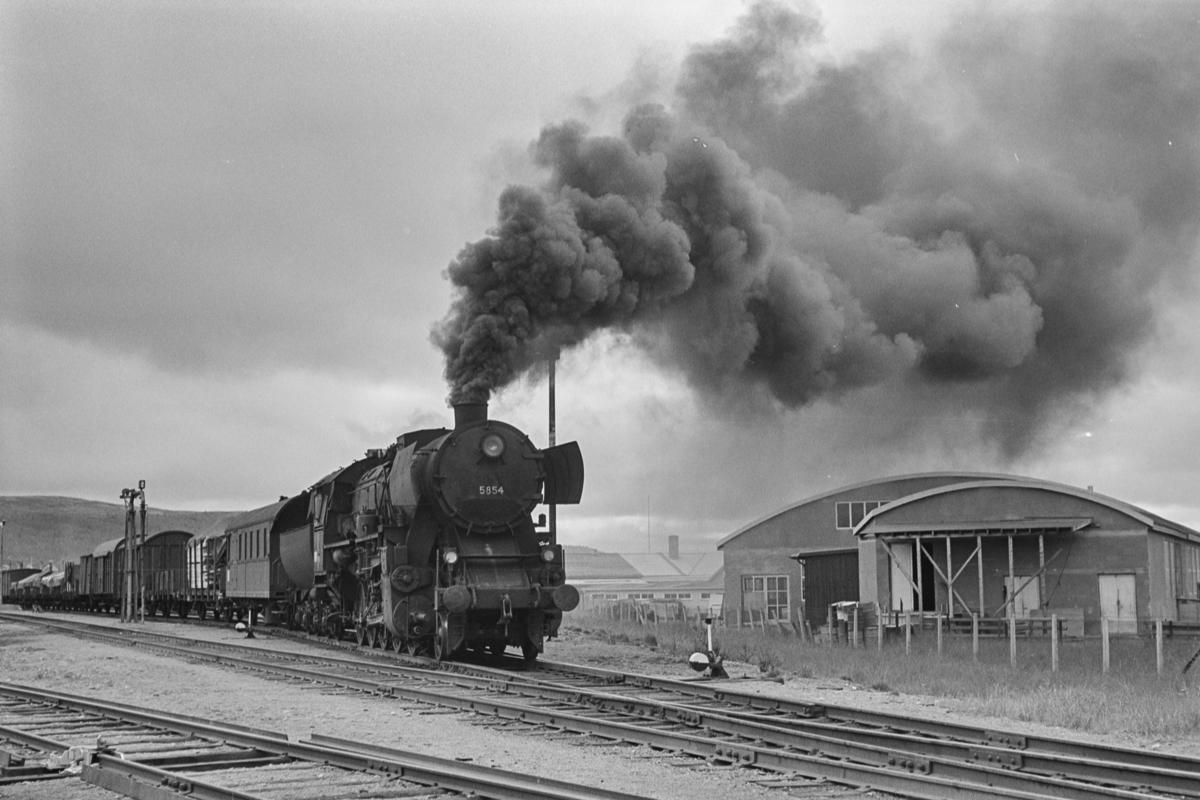 Nordgående godstog på Rørosbanen på Røros stasjon. Toget trekkes av damplokomotiv type 63a nr. 5854.