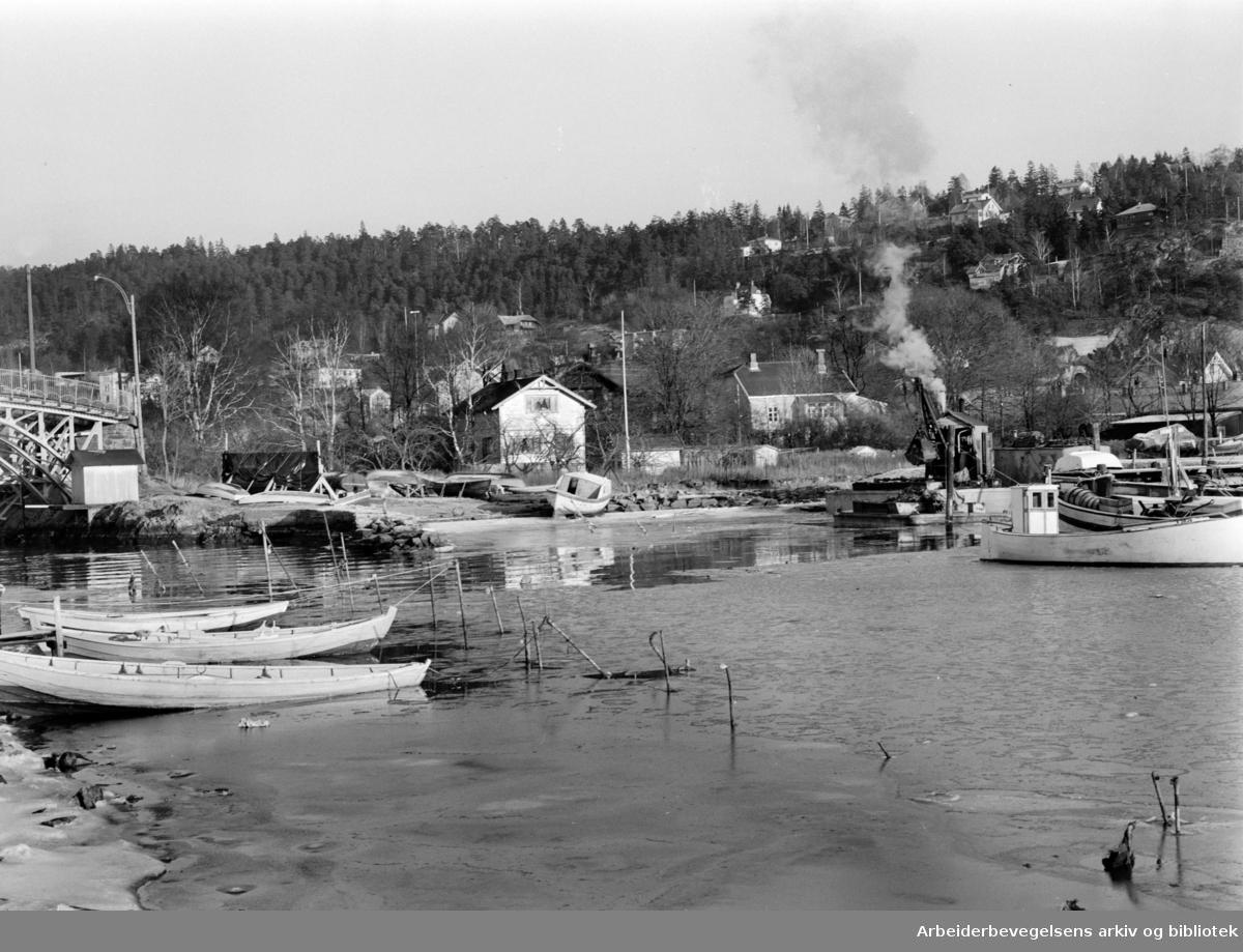 Bekkelaget. Bekkelagshøgda sett fra Ormøya. Januar 1964
