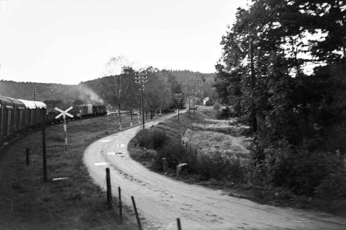 Godstog fra Arendal til Nelaug ved Rise. Toget trekkes av damplokomotiv type 21b nr. 225 og 21c nr. 376.