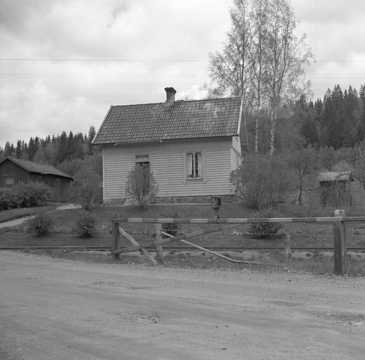 Skövde - Axvalls Järnväg, SAJ, banvaktstugan vid Stenberget på linjen mellan Våmbsklevens hållplats och Billingens hållplats. 1870 års Varnhemsväg korsar järnvägen. En av arbetlagsledarna för SAJ banbygge 1902 - 1904 var Gustav Karlsson. Han blev senare banvakt med placering i banvaktstugan vid Stenberget där han tjänstgrorde fram till 1945.