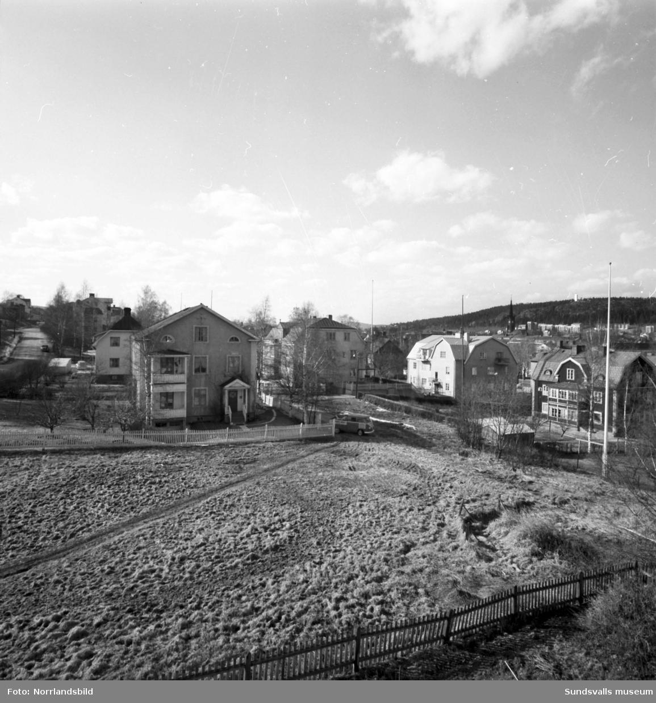 Vyer med bostadshus i kvarteret Bladet på Södermalm. Bilderna verkar vara tagna från taket till ett hus i det sydöstra hörnet av kvarteret. De flesta av dessa hus finns ännu kvar (2019) på adresserna Bergsgatan 9-15, Erstagatan 3-5 och Bladgränd 8.