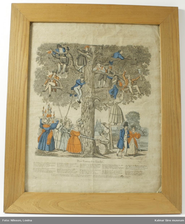 """KLM 19891. Tavla.""""DER BAUM DER LIEBE"""". Handkolorerat träsnitt föreställande ett stort träd bland vars grenar det sitter ett antal män. På marken står flera unga kvinnor som försöker komma åt männen på olika sätt. Bl. a. är två kvinnor i färd med att såga ner trädet. Under bilden finns en dikt på tyska. Träsnittet är inramat i en ram av glas och trä. Sign: Geuder sc. Tryckeri: Nürnberg bei G.R.Renner & Schuster. Det humoristiska motivet som handlar om att skaffa sig en make, längst till höger har en kvinna lyckats i jakten och paret går iväg tillsammans. Datering, 1840-tal. Ursprungligen går trycket tillbaka på motivet med Adam och Eva och äpplen i trädet."""