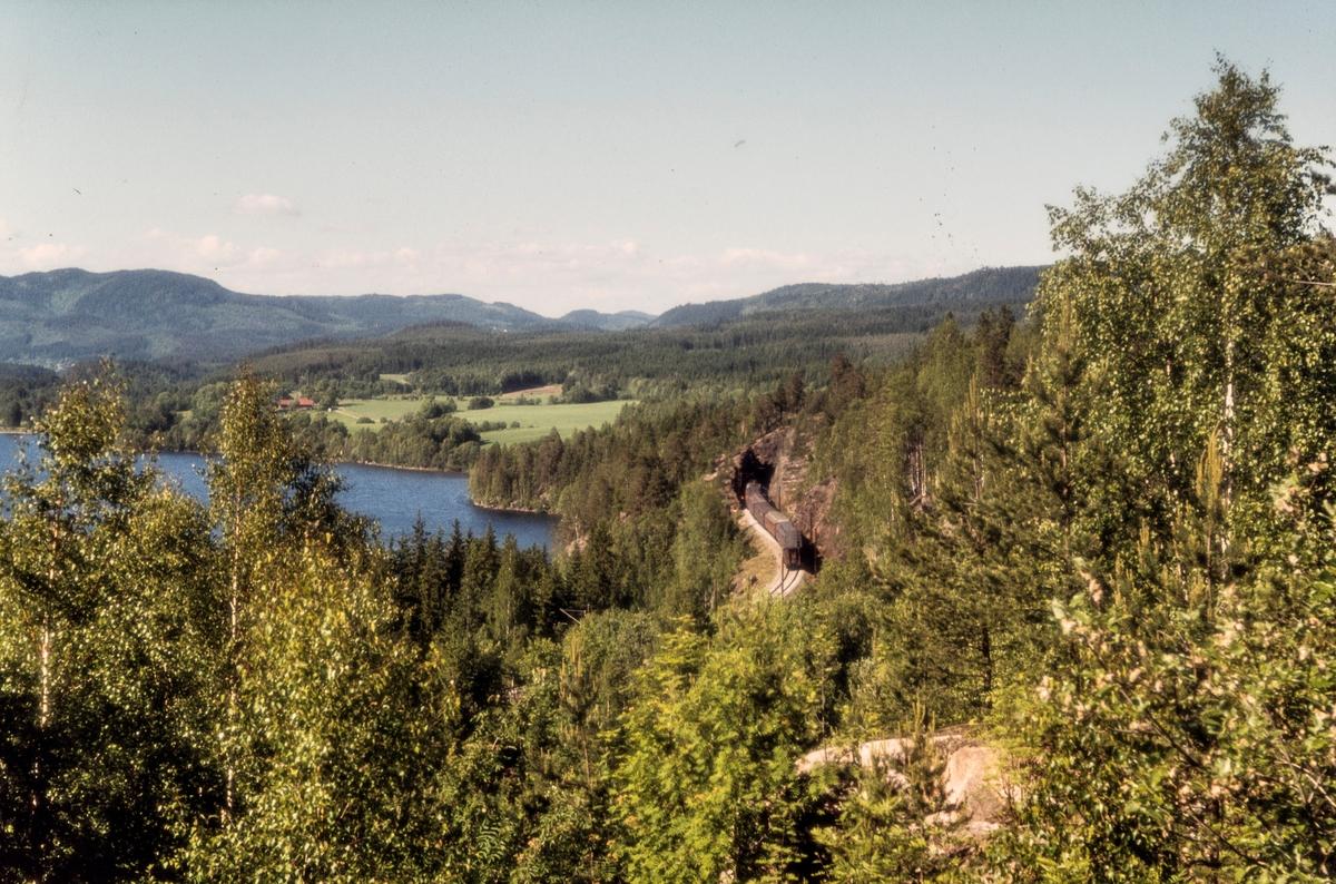 Persontog 217 fra Oslo Ø til Jaren mellom Sandermosen og Kjelsås stasjoner