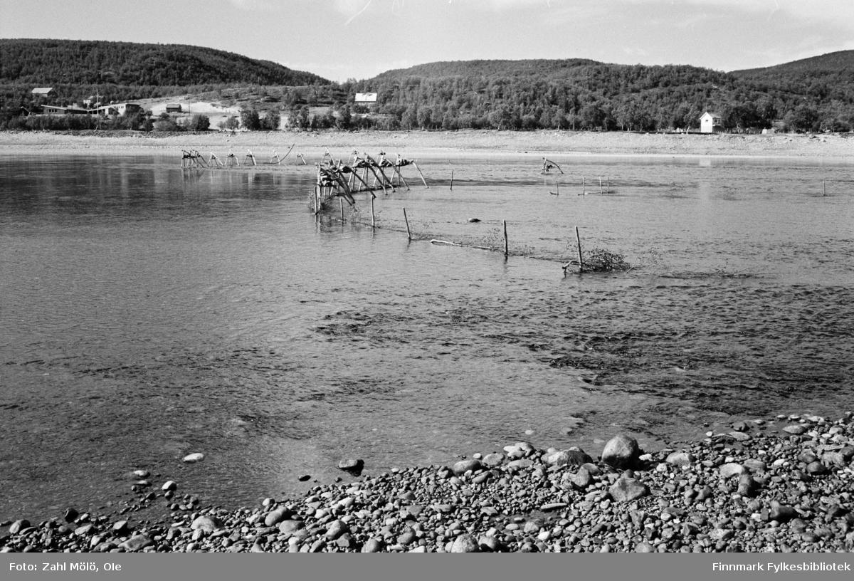 Utsjok-tur, Finland. Fotografert i august 1969. Elvebredd med laksestengsler.