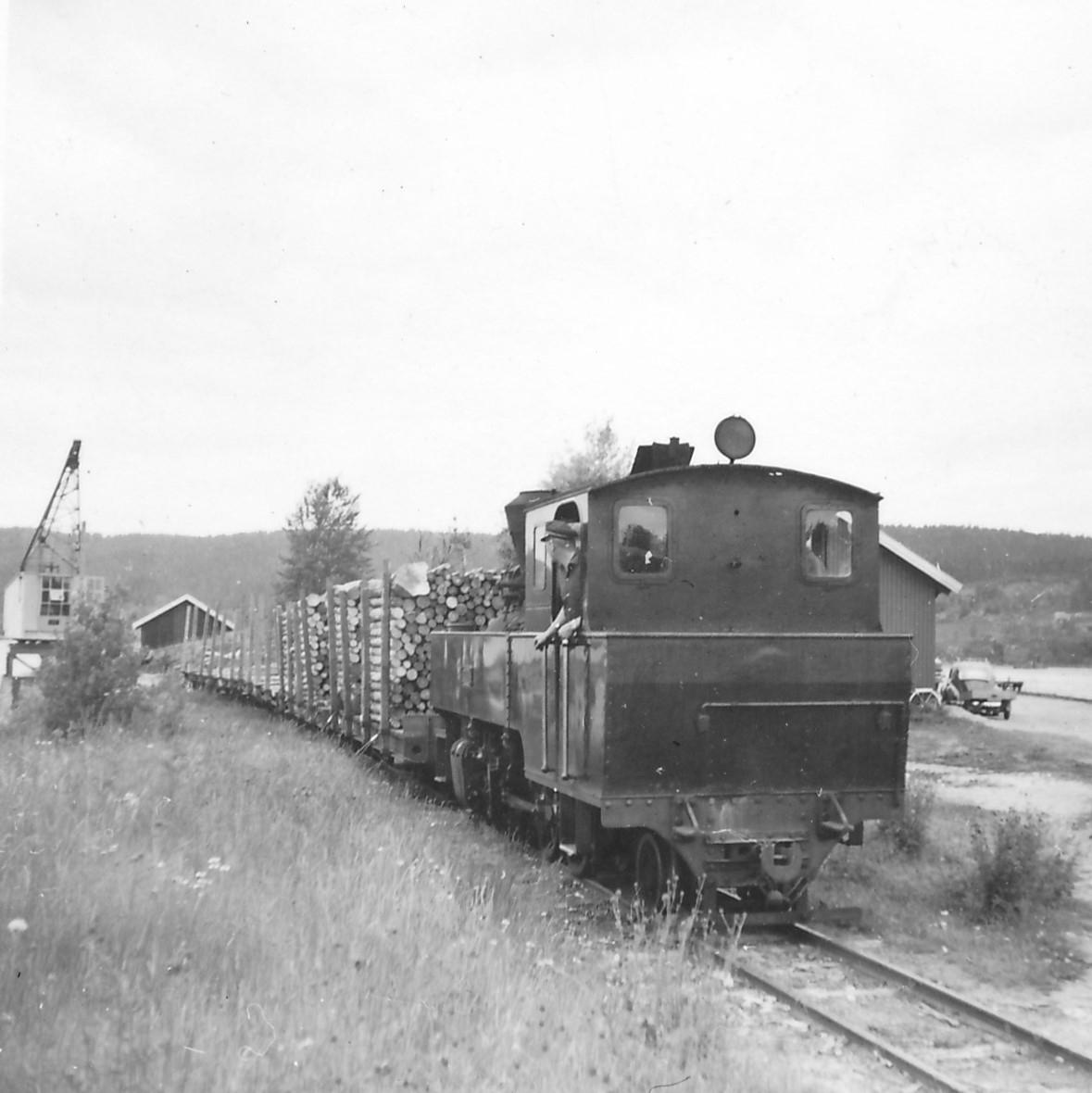 Damplokomotiv type XXIXb nr. 7 PRYDZ med tømmervogner ved tømmerkranen på Skulerud stasjon.