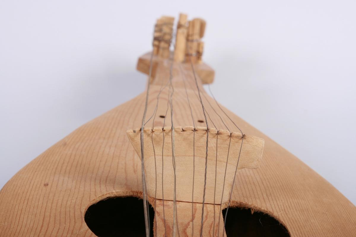 Folkelig strykeinstrument fra Balkan med spillestrenger og understrenger.