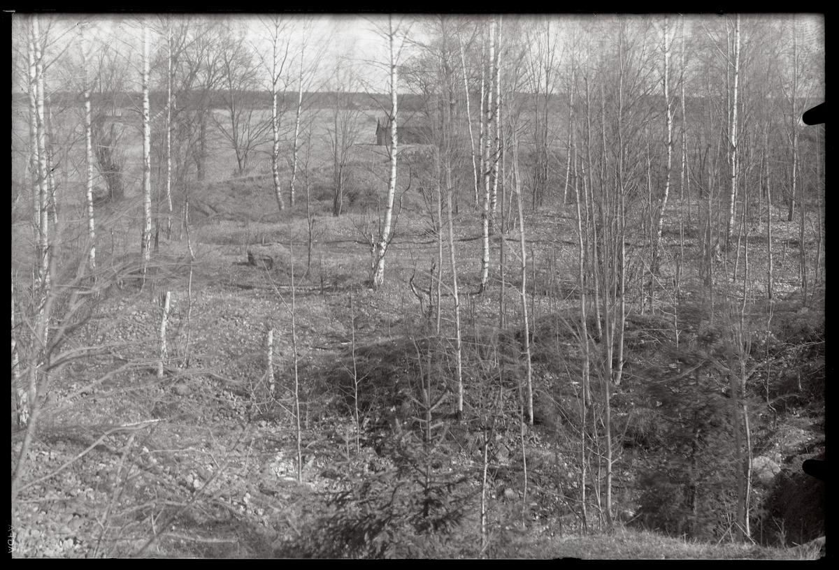 Gravfältet norr om Ströbohög i Köping.