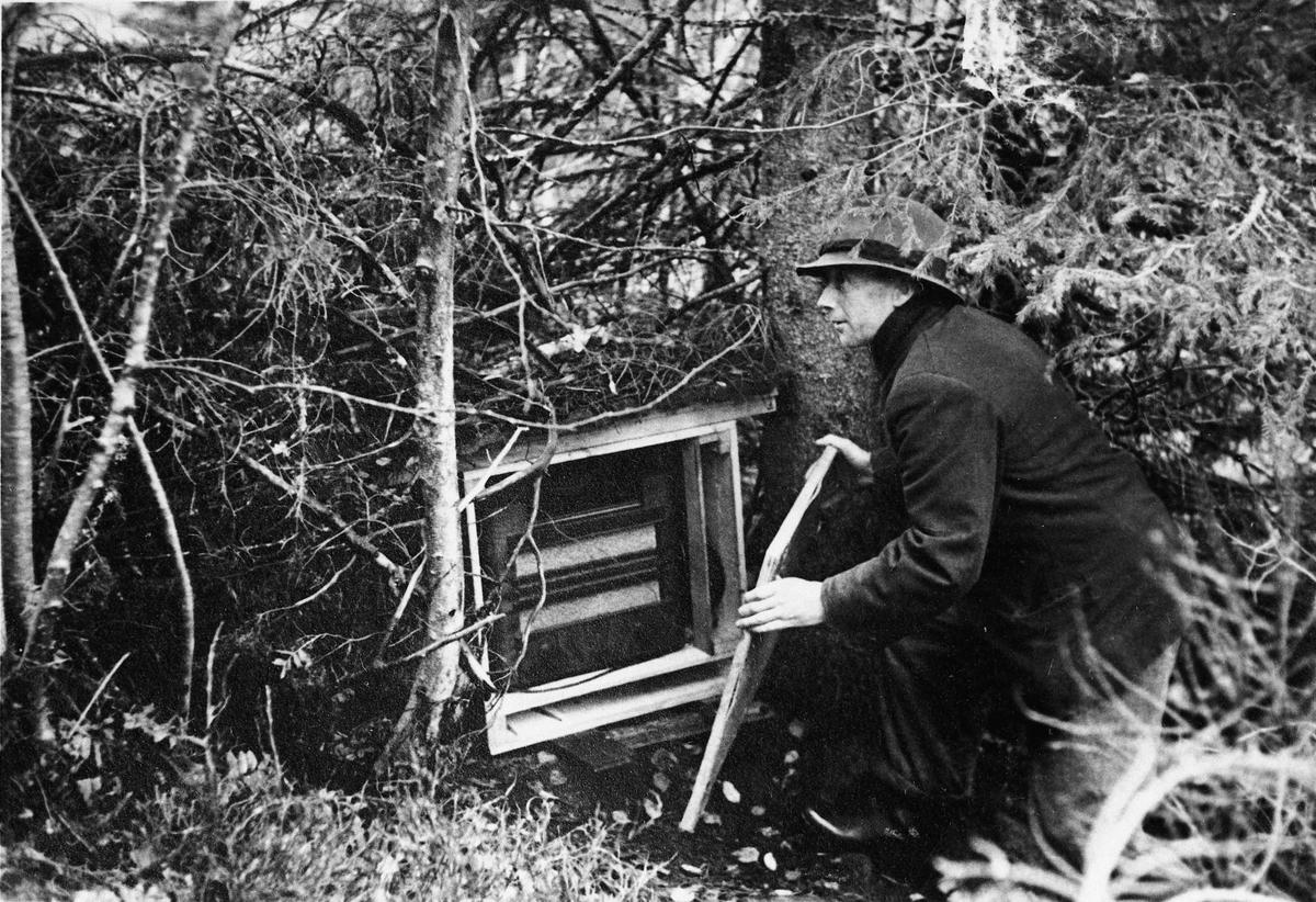 Torbjørn Røen. Tatt før høsten 1944. Radioen var skjult i skogen i nærheten Rikardsbråten i Gullverket. På bilde 2 ser vi Røen til høyre og Peder Endeve, Voss.