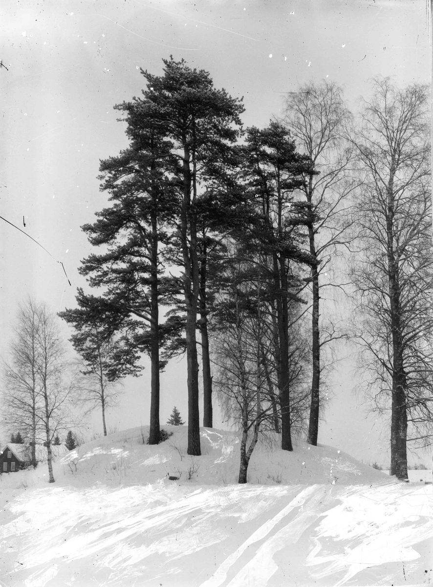 Landskap med Jøtulvegen i bakgrunnen