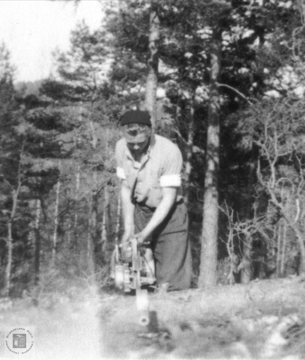 Skogsarbeid ved John Roland i Bjelland.