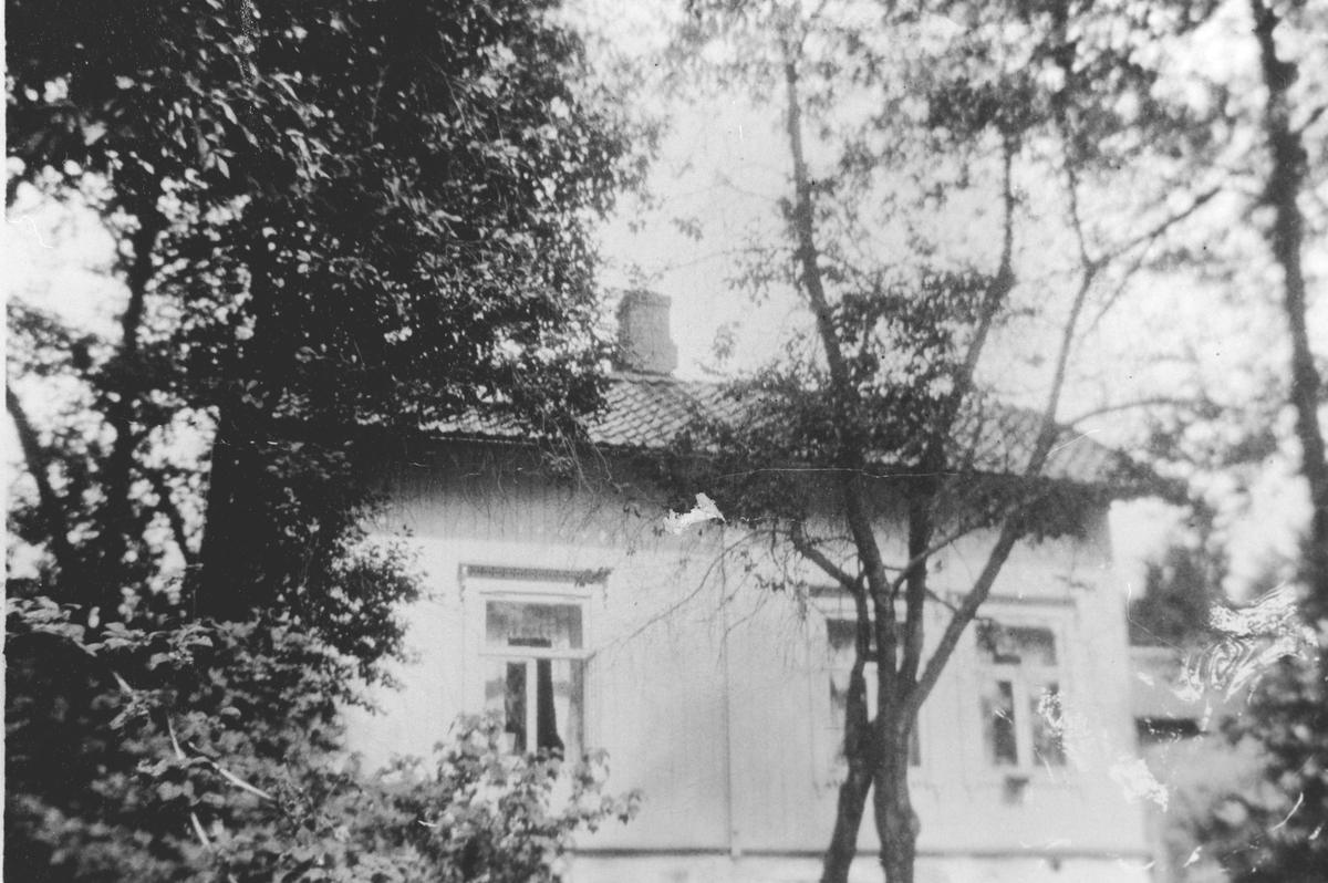 Villa Øvre Haglund - fra vest