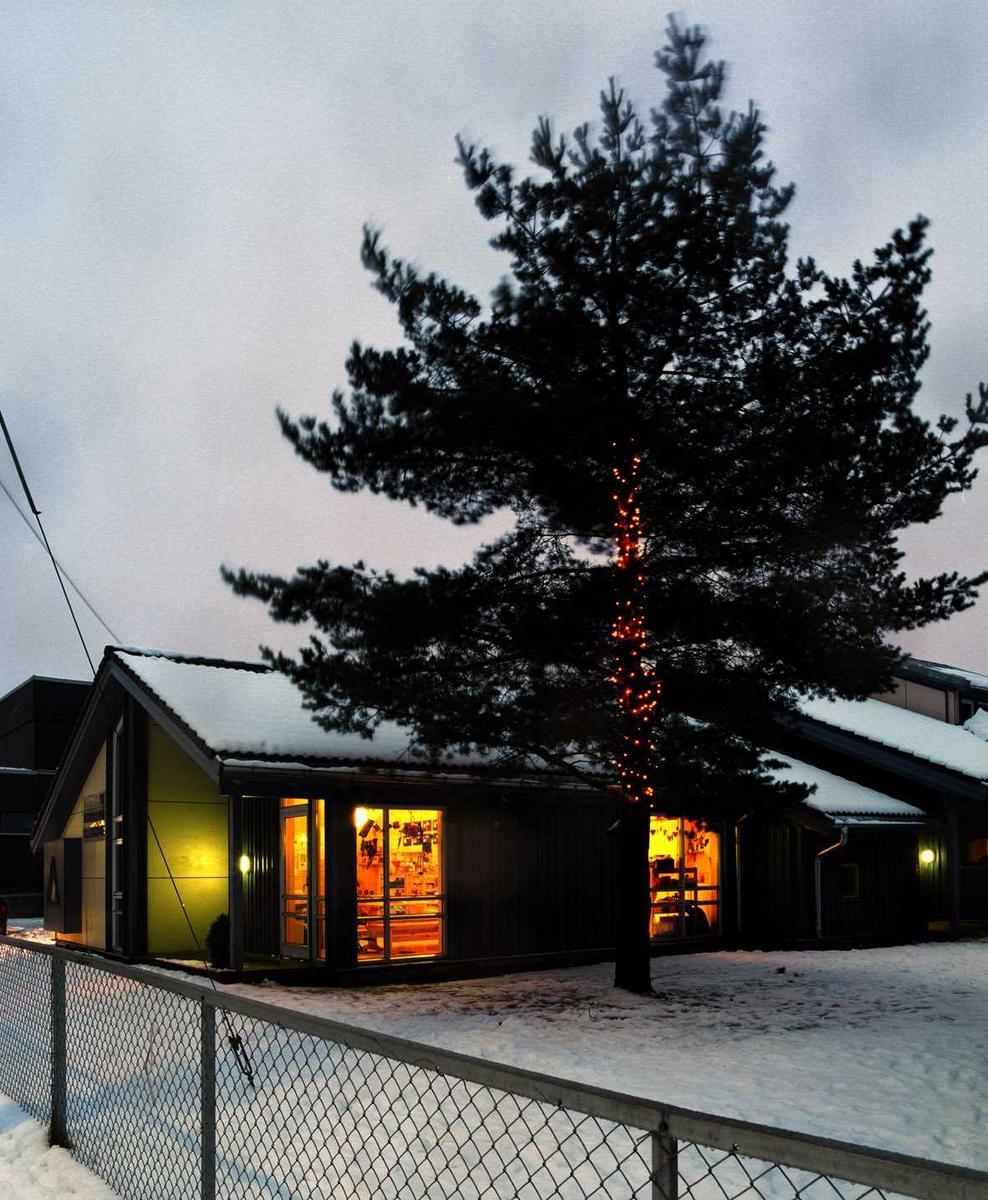 Julebelysning  Lysnett rundt stamme på furu ved barnehage