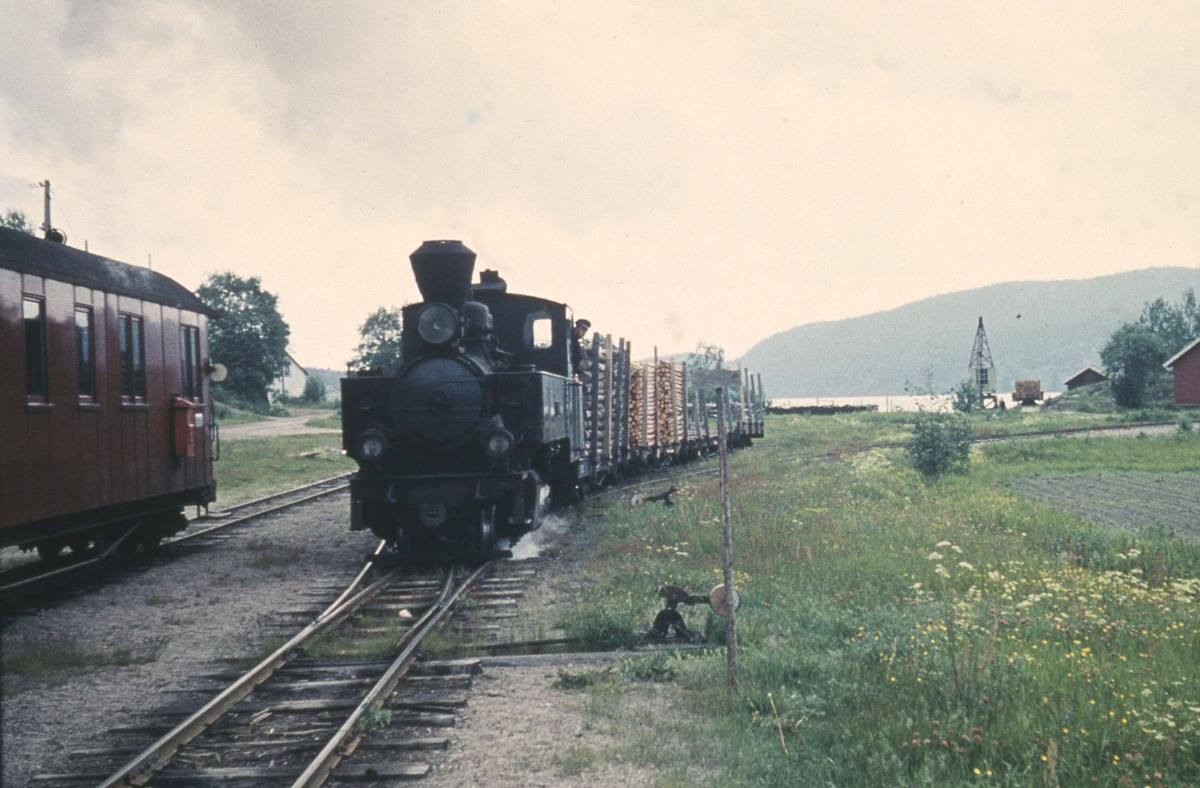 Skifting med vogner lastet med tømmer og kubb på Skulerud stasjon