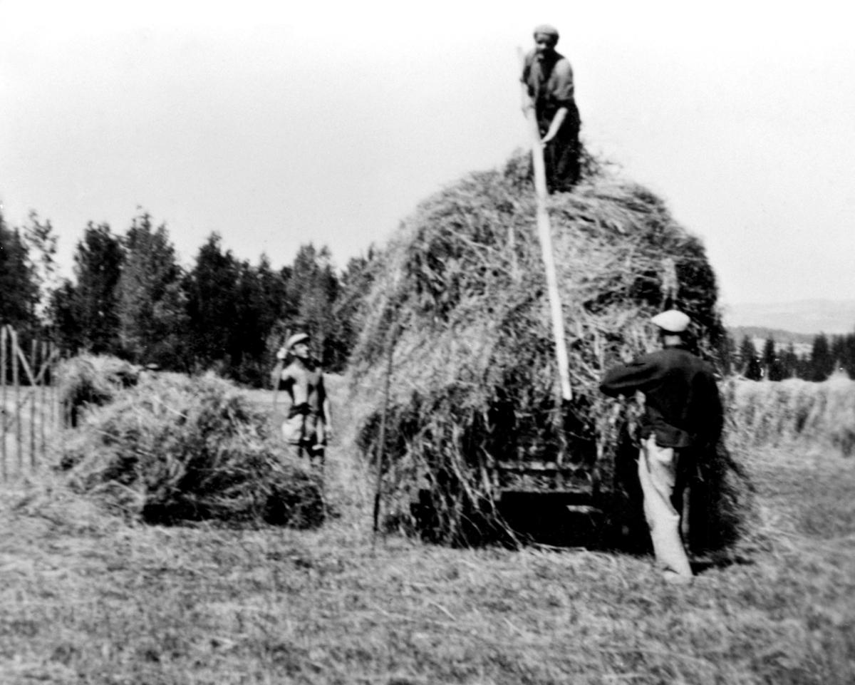 Høyonn på Tørud gård, Ringsaker. Innkjøring på vogn, hesjer, folk.